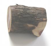Cedar Box 003