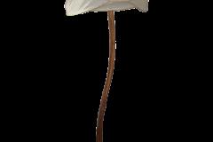 cedartreelamp3